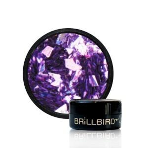 VIVID ICE 9 violet