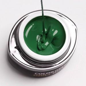 Go21 Gel de couleur 4,5ml